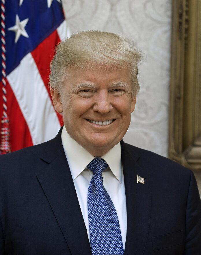 Mantan-Miss-Universe-Ini-Bahagia-Donald-Trump-Kalah-Pemilu-AS-2020